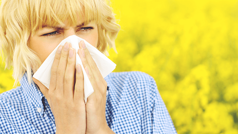 Paine, Allergies - Image